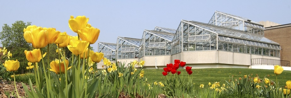 Biology greenhouse